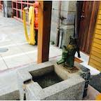 ジブリ美術館にあるような井戸 現役で使用されているのかは判りませんでした。
