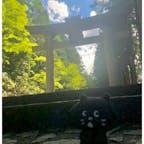 11/09/20 @日枝神社 #君の名をの舞台 #にゃーと旅日記