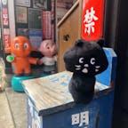 11/09/20 @飛騨高山レトロミュージアム #Satoのぞうさんと。 #にゃーと旅日記