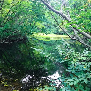 佐渡島 乙和池 人工物のない自然ありのままを感じられる場所
