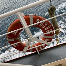 カモメとトンビと一緒に港内一周20分の旅