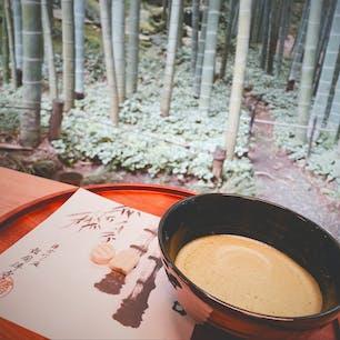 鎌倉 報国寺🍵