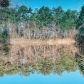 どっちが水鏡ですかね。これは福島の五色沼です。