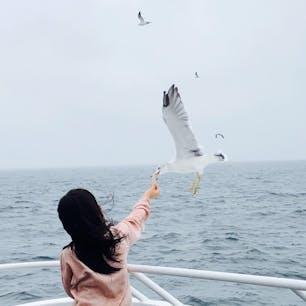 初島〜熱海へ #イルドバカンスプレミア