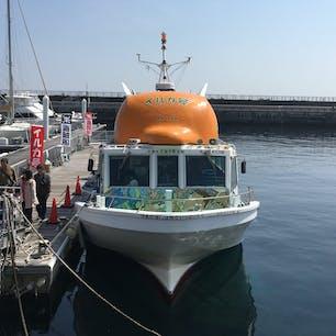 遊覧船はるひら丸イルカ号
