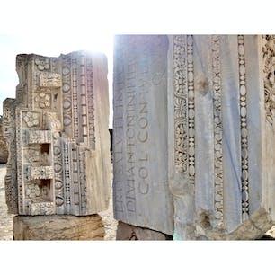 【チュニジア🇹🇳】カルタゴ  アントニヌスの浴場跡  #チュニジア° #2019/03