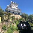 06/10/20 @岐阜城 #金華山っていう山です。 #にゃーと旅日記