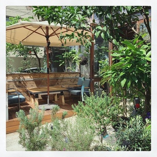 SORAYA🌿  門前仲町にある植物屋さんとカフェ。 緑いっぱいで癒される🌱