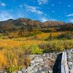 2020.10.11 弥陀ヶ原トレッキング 大日岳の迫力 あの頂上に登ったんだなー