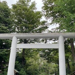 阿佐ヶ谷神明宮⛩  神結び✨欲しく、総武線でトコトコ。 雰囲気がとても良い神社