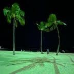 ヒルトンハワイアンビレッジ  夜の砂浜!! ヤシの木🌴が、南の島感を演出!!