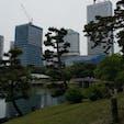 純日本庭園の後ろに高層ビルが面白い場所