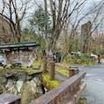 ⋆⸜ 黒川荘 ⸝⋆  黒川温泉 ♨︎ いいお湯でした〜  #熊本