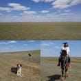 近未来都市からほんの少し離れると、大草原!