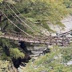 祖谷のかずら橋 徳島県三好市西祖谷山村にあります。  #四国 #全国橋巡り #サント船長の写真