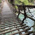祖谷のかずら橋 3年に一度吊り替えるそうですが、全て替えるのかな? そうとう昔から此の橋は観光化して安全性のことを考え、鋼鉄のワイヤーと鉄筋で補強されていますが、歩くとかなり揺れます、しかもかなり隙間が開いて居ますて、渡るには時間も掛かりますが、その前に怖いですね😰  20年前にも渡りましたが揺れは気にならず渡るにも怖くも何とも有りませんでした。50代の時と70代ではこんなにも違うのですね(笑)  #四国 #全国橋巡り #サント船長の写真