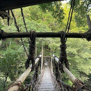祖谷のかずら橋 20年前に来た時と今とでは感じが随分と変わって居ます。 20年前は一本手前の橋を車がバンバンと走り秘境が売り物の「かづら橋」は近代化された地域に成り、秘境祖谷はただの村の感じでしたが、今回訪ねて見たら「お!?」秘境が戻って居る良い感じでした、コロナ渦の性でも有るかなぁ、 こんな事、感じたのはオイラだけかな?  #四国 #全国橋巡り #サント船長の写真