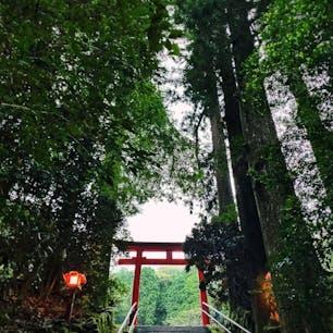 📍神奈川県 | 箱根  ✈︎ 2020.09  [ 箱 根 神 社 ]  静寂の箱根神社⛩は美しかった🥺✨
