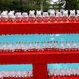 岡崎神社  🐇🐇🐇