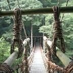 祖谷のかずら橋(平成) コレは20年前の写真ですね。  令和2年10月14日の写真と比べ下さいね。  #四国 #全国橋巡り #サント船長の写真