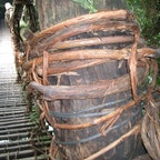 祖谷のかずら橋(平成) コレは20年前の写真ですね。 随分と柱に巻き付けた、鉉が少ないですね。中のワイヤーが見えて居ます。   #四国 #全国橋巡り #サント船長の写真
