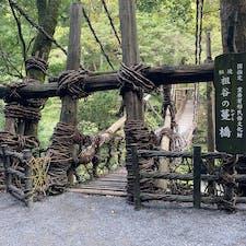 祖谷のかずら橋(令和)   #四国 #全国橋巡り #サント船長の写真