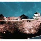 2019.4 金沢 お城と桜🏯🌸🌸🌸 The 和な景色でした!!! 何百年も経つ建物、景色に心奪われました😊