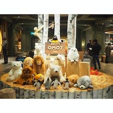 星野リゾートOMO7旭川では、かわいい動物たちがお出迎え😍