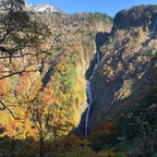 2020.10.31 八郎坂から見下ろす称名滝と紅葉🍁