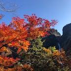 2020.10.31 八郎坂 紅葉越しの称名滝