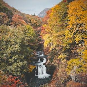 作並温泉近くの鳳鳴四十八滝、紅葉の見頃でした🍁駐車場からすぐだしあまり混まないので、行きやすい紅葉スポットです。