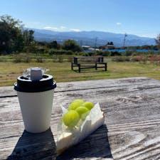 長野県東御市にあるアトリエ・ド・フロマージュ。併設されてるレストランとカフェは行列ができてたのであきらめて、売店エリアでシャインマスカットの生チーズケーキタルトとコーヒーを買って外のベンチでいただきました🍴