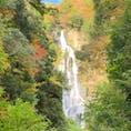 神庭の滝の周りも色づき始めました🍁