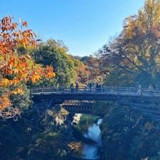 📍山梨県|大月市  ✈︎ 2020.11  [ 甲 斐 の 猿 橋 ]  日本三大奇橋のひとつ、甲斐の猿橋🐵 高さ31mと渓谷が深く脚がかけられないため、両側から張り出された4層の刎木によって支えられていて、釘を1本も使われていない珍しい構造なんだとか。 階段を登ったところにある「新猿橋」からの撮影がオススメ📸