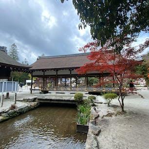 橋殿  橋は舞殿とか、橋殿と言われて居ます。 此の橋は見た感じ建物ですが、間違い無しの橋です。  #日本百名橋 #全国橋巡り #サント船長の写真 #京都 #神社仏閣
