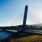 2020.11.14 氷見乃江大橋