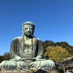 鎌倉 高徳院 大仏 20.11.14 ★☆☆☆☆  鎌倉大仏は、高徳院の本尊で青銅製の「阿弥陀如来坐像」。建立当時には金箔が施されていた。 最初の大仏は木造で1243年(寛元元年)に完成したが、台風により崩壊したため、1252年(建長4年)、新たに青銅製の大仏の鋳造が始められ、大仏殿に安置された。  コメント 札幌時計台のような、意外にあっさりした印象。  #鎌倉大仏 #高徳院