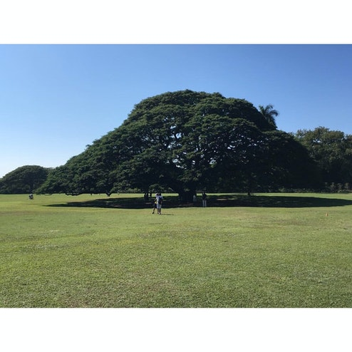 モアナルア ガーデン