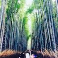 京都🍂嵐山