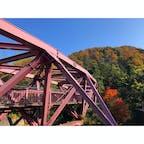紅葉の名所、鶴仙渓。あやとりはしとのコントラストが美しい。  #石川 #山中温泉