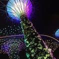 《シンガポール》 ガーデンズバイザベイ  2016.03