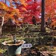 滋賀県永源寺 水面にうっすら「永源寺」が映っています。 2020/11/18