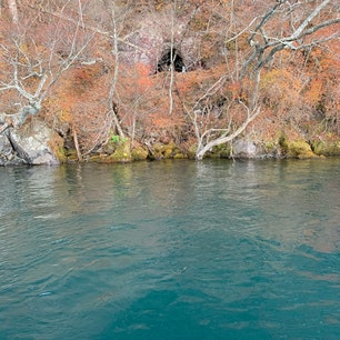 十和田湖 紅葉は少しだけ残ってました