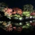 東寺 京都  水に反射しているのがミソ😌🚰