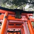 #伏見稲荷大社 #京都