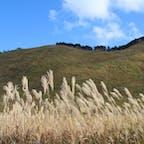 2020/11 #奈良 #曽爾高原