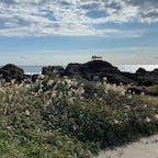 野島崎灯台の前、房総半島最南端の地の岩場にポツンと置かれたベンチ。なかなかのロケーションでした。ここから朝日と夕陽、どちらも見えるらしいです👀