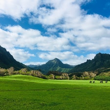 📍Kualoa Ranch, Hawaii  ハワイのクアロアランチ。 この景色の中でのジップライン・ツアーが最高に気持ち良くて楽しかった!