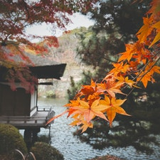 和歌山城 紅葉渓庭園