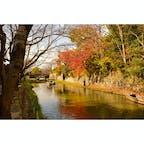 2020.11.22.SUN.🍂 #八幡堀 #近江八幡 #滋賀 #hachimanbori #omihachiman #shiga